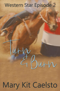 Book Cover: Turn and Burn