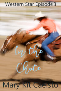 Book Cover: In The Chute
